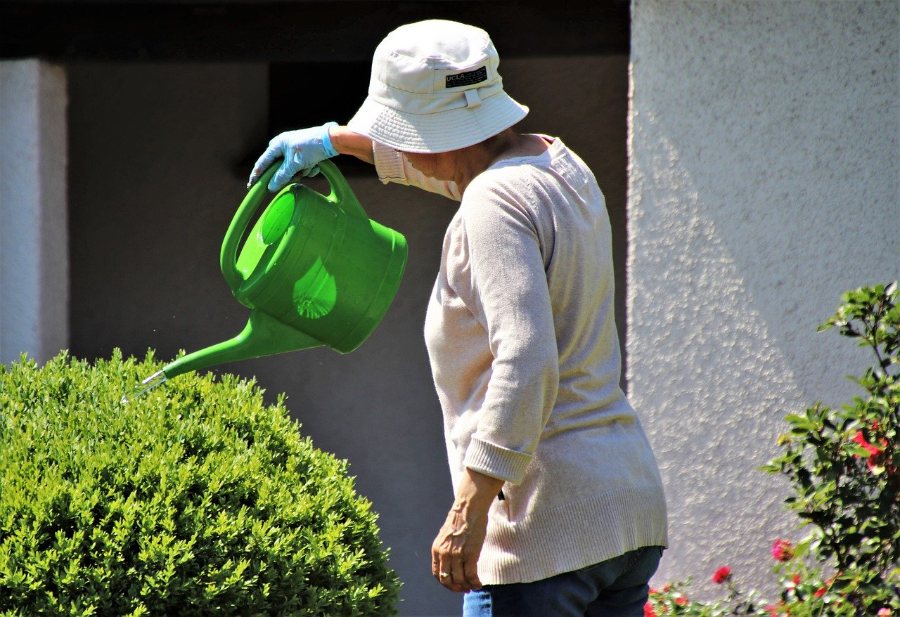 Elderly hydrated, watering plants